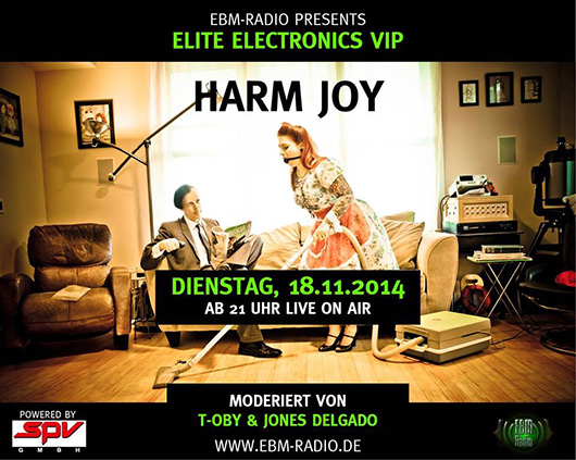 Flyer Elite Electronics Harm Joy